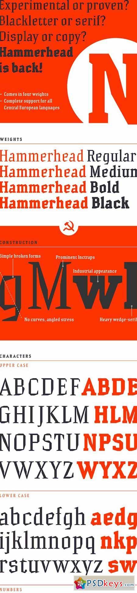 Typeface Hammerhead