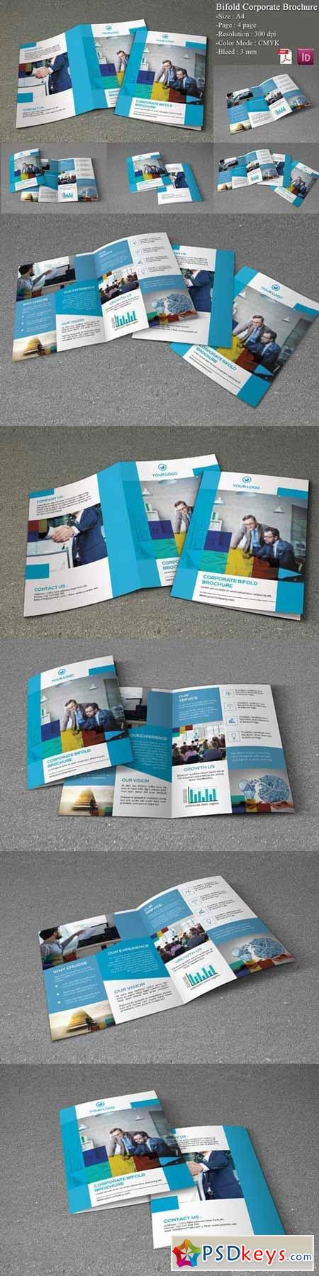 Bifold Corporate Brochure 348018