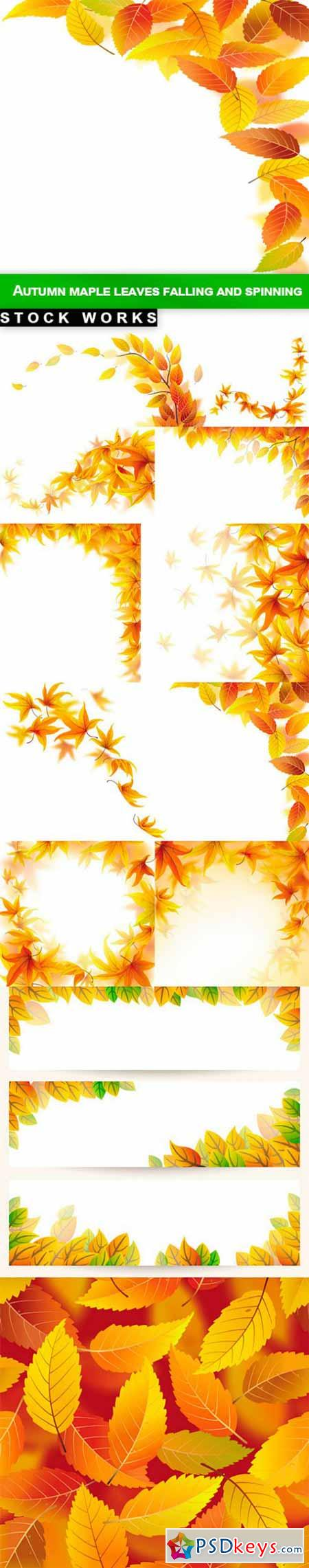 Autumn maple leaves falling and spinning - 12 EPS