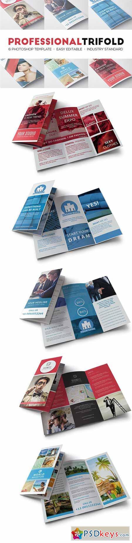 Professional Trifolds Bundle 379874