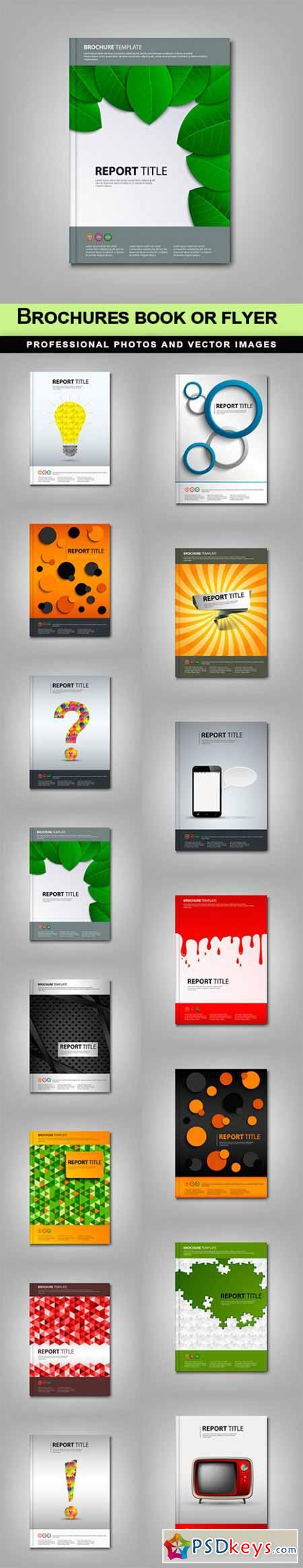 Brochures book or flyer - 15 EPS
