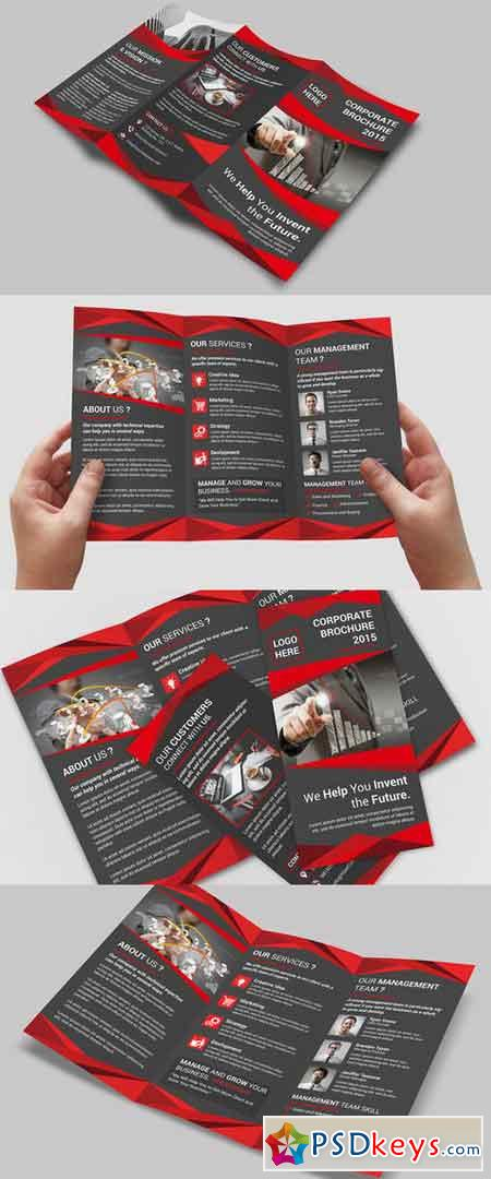 Corporate Trifold Brochure 387634