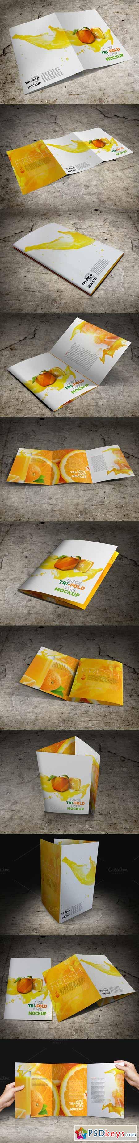 Large Trifold Brochure Mockup 388213