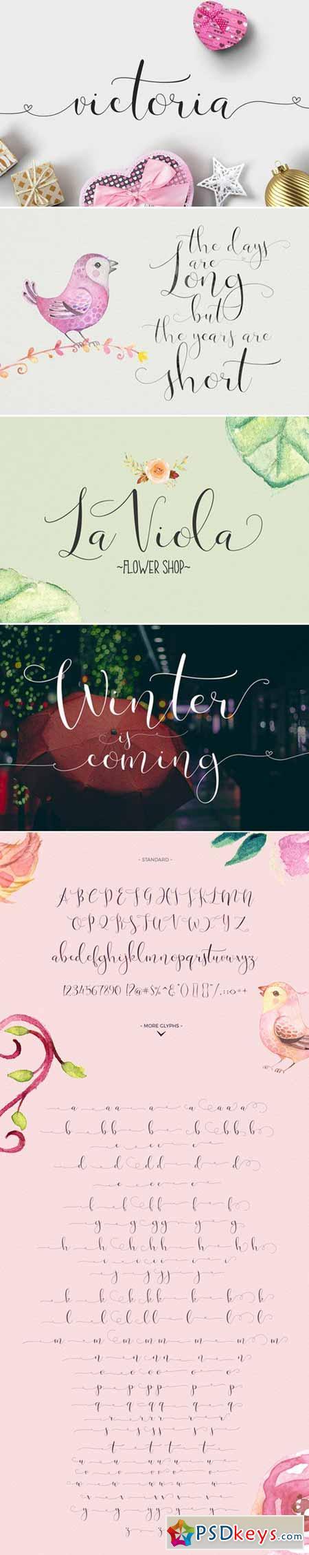 Victoria Script Font 381195