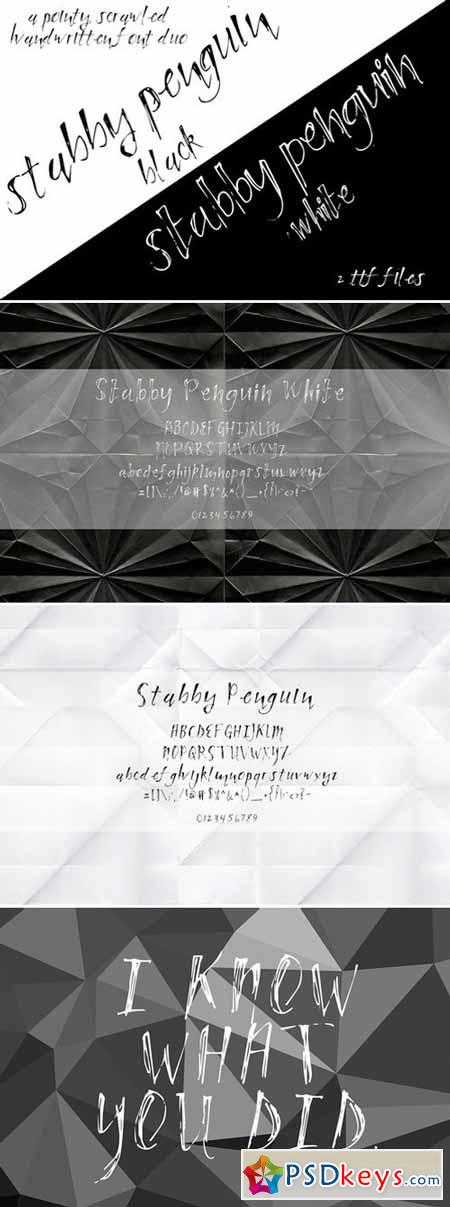 Tabby Penguin Handwritten Font Duo 396201