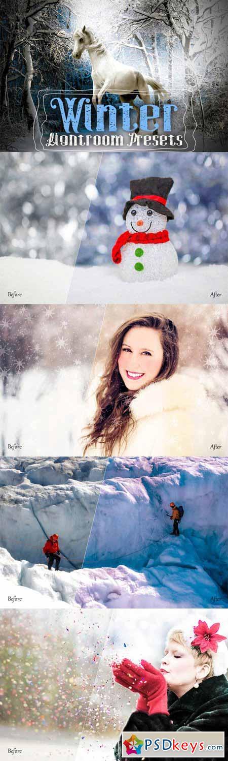 Winter Lightroom Presets 389615