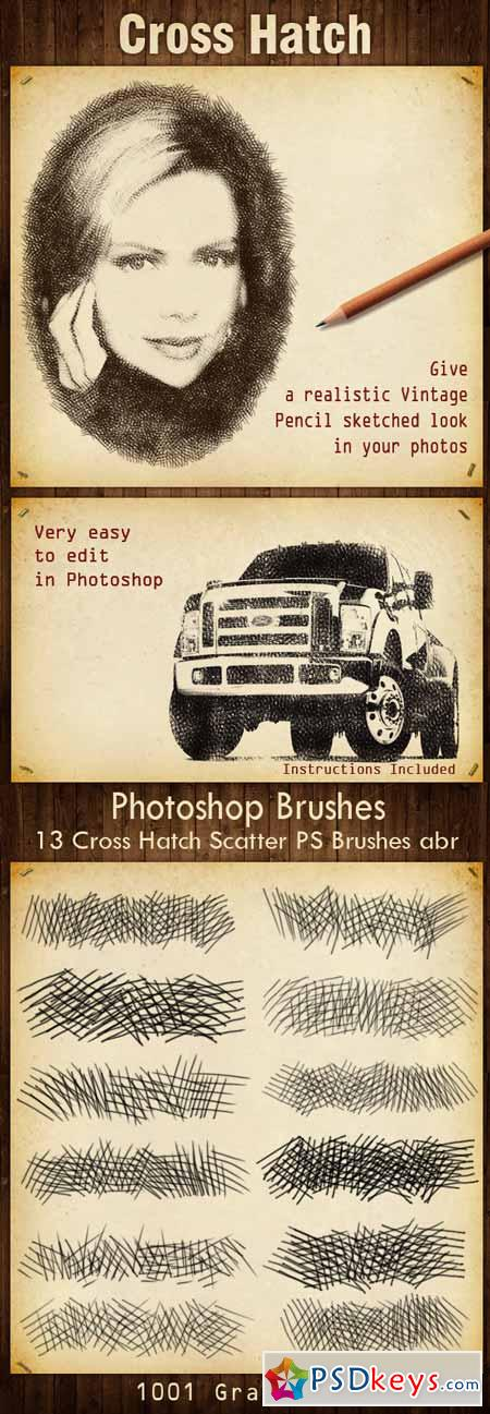 13 Cross Hatch Scatter PS Brushes 13268249