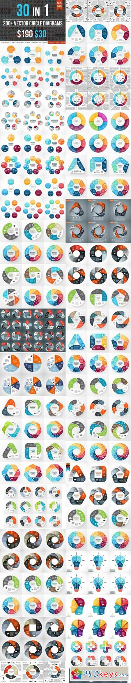 Circle Diagrams For Infographics 400216