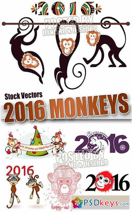 2016 monkey 3 - Stock Vectors