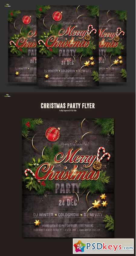 Christmas Party Flyer 419314