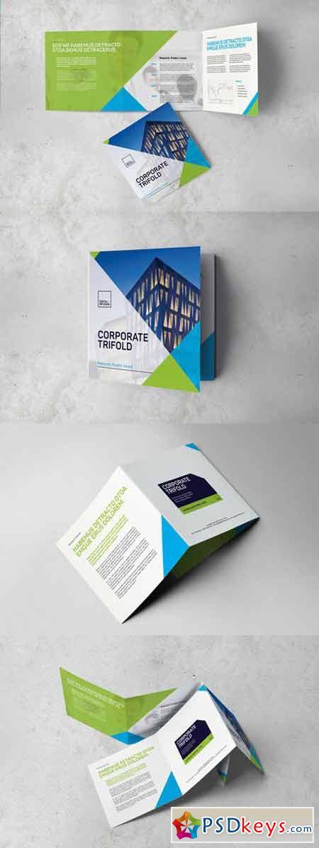 Corporate Square Trifold Brochure 386413