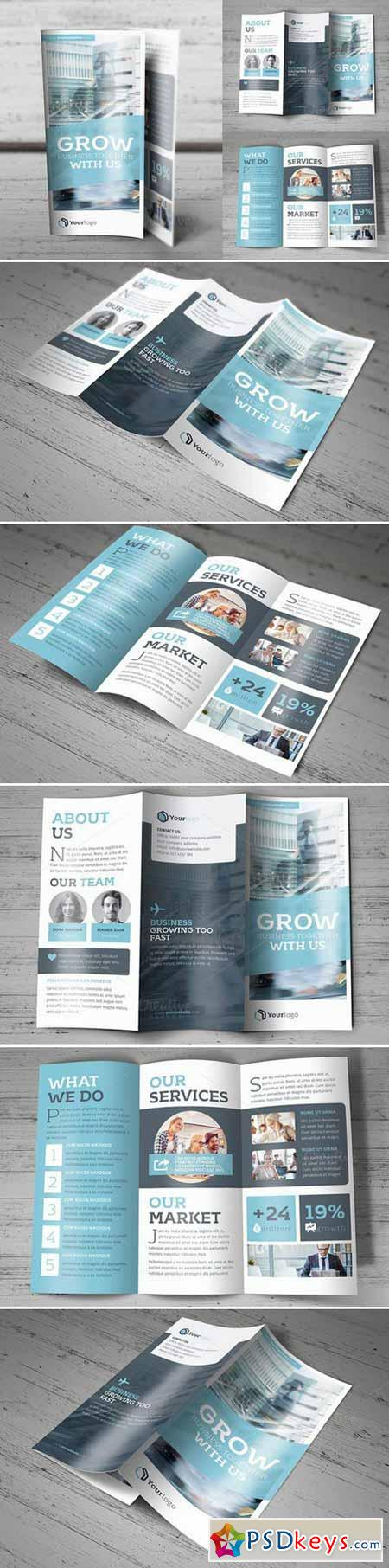 Trifold Brochure 431206