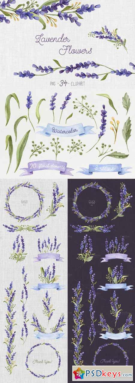Watercolor set with Lavender Flowers 272472