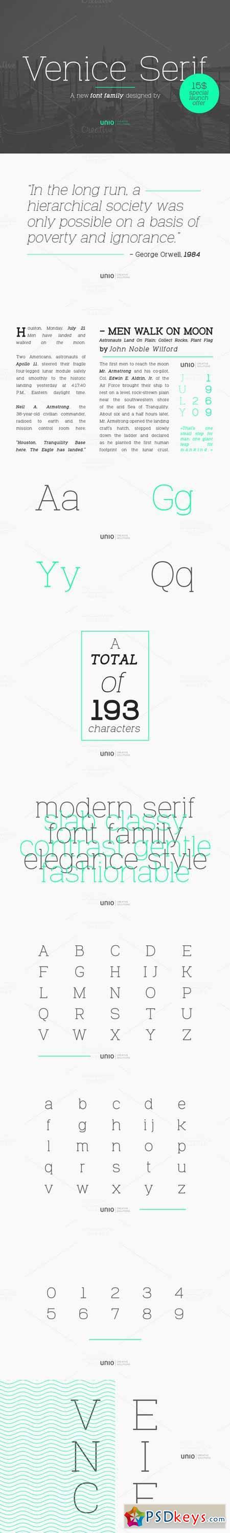 Venice Serif - Font Family 462153