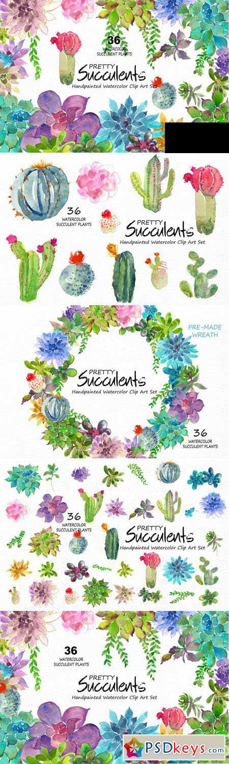 Pretty Succulents- Watercolor 468795