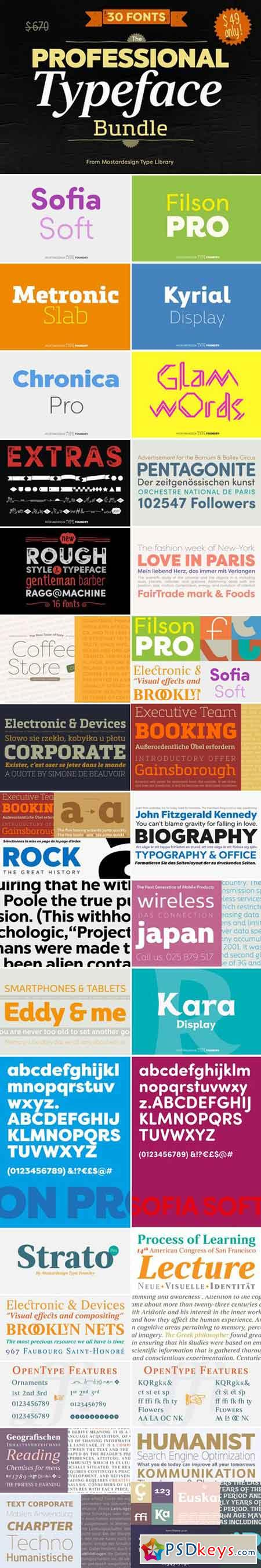 The Professional Bundle 30 fonts 465694