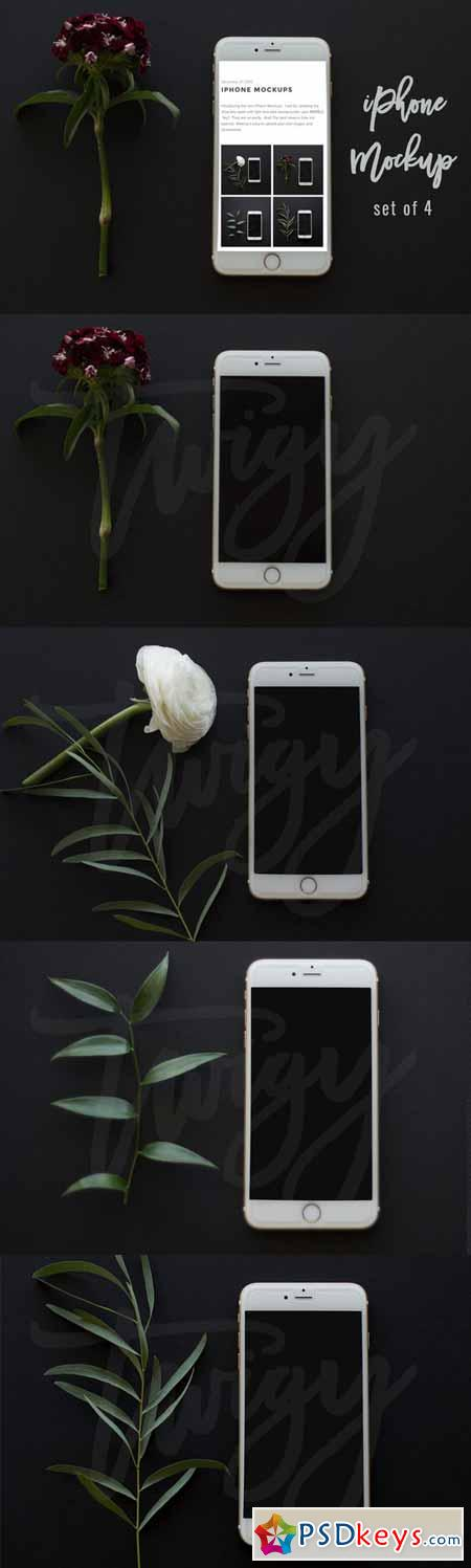 iPhone Mockup Square Format 477817