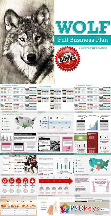 Wolf Full Business Plan PowerPoint 481033