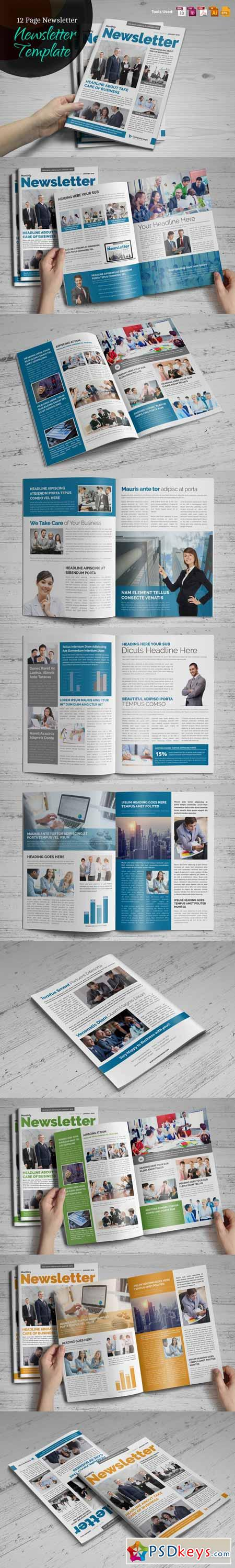 Newsletter Indesign Template v2 485958
