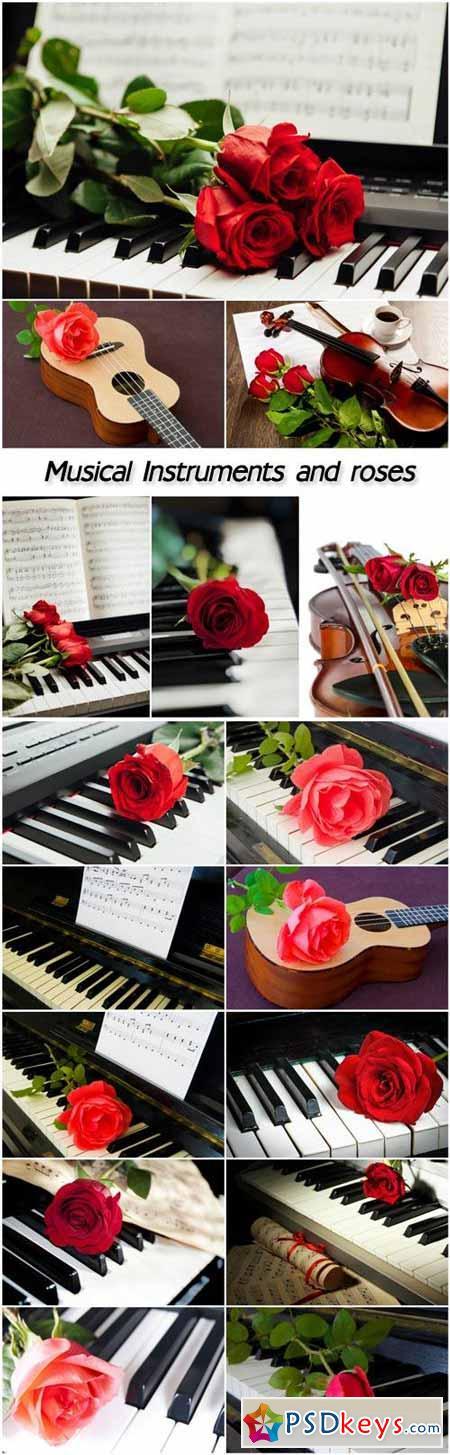 Musical instruments and roses, guitar, violin, piano