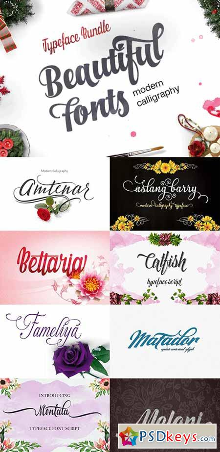 The Typeface Bundle with 10 Beautiful Fonts