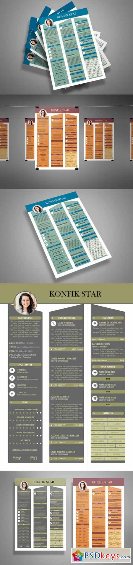 Professional Resume CV 3 colors 509827