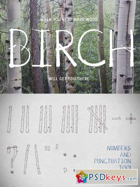 Birch Is Right Here - Fill 522324