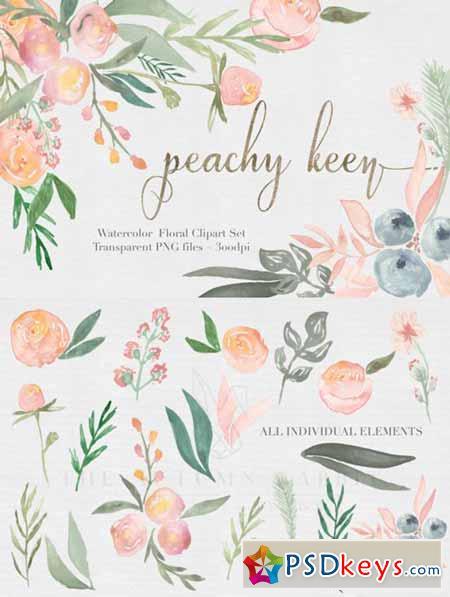 Peachy Keen Watercolor clipart Set 476836