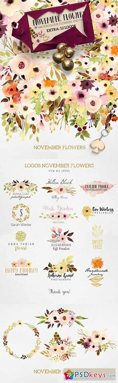 Logos and November Flowers 429313