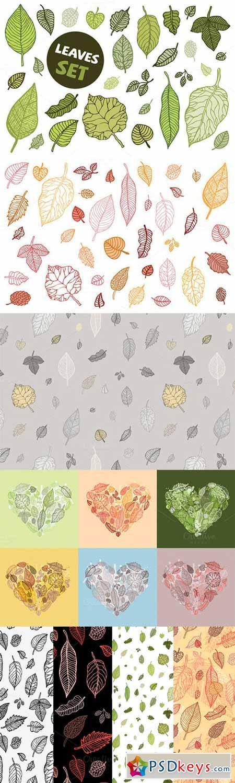 Leaves set 23178