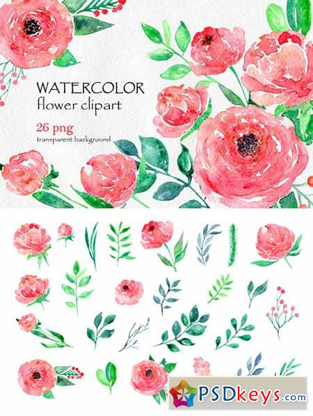 Watercolor flower peony, 26 in set 557047