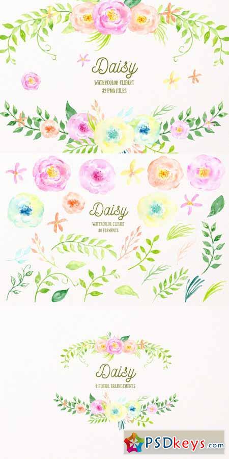 Watercolor Clipart Daisy 554049