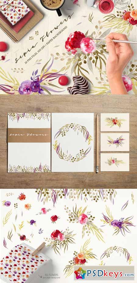 Sepia Flowers 561568