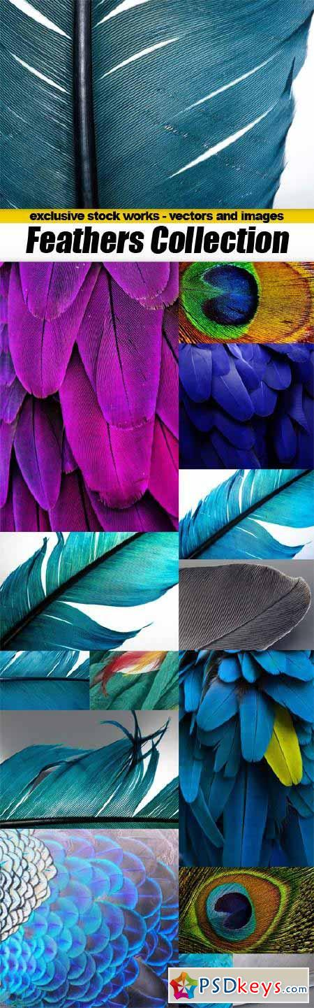 High Quality Closeup Feathers Collection - 15x JPEGs