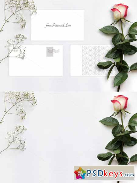 Layered PSD Mock-up with a Rose 587290 » Free Download
