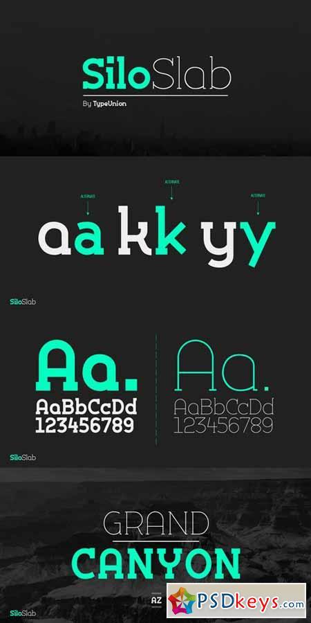 Silo Slab Font Family $100