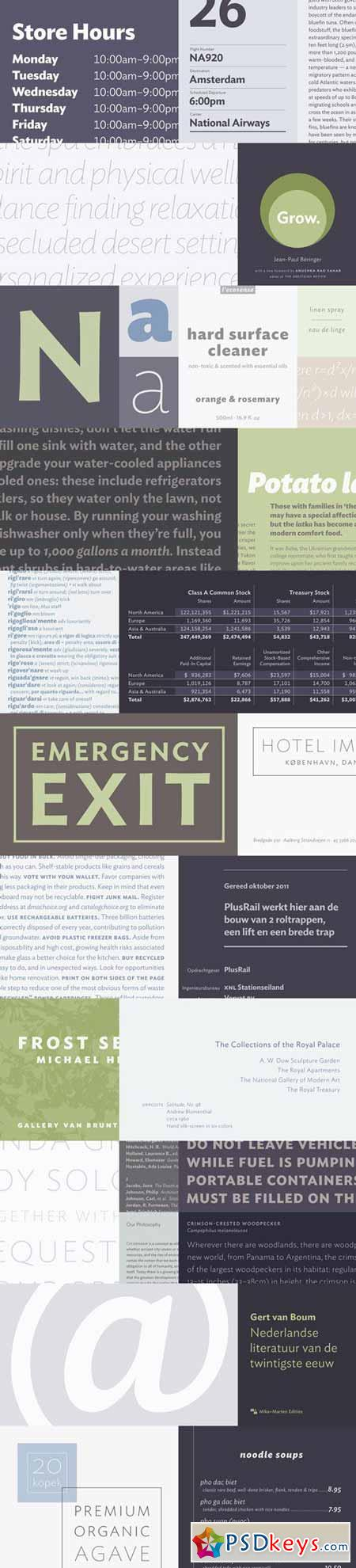 Ideal Sans Font Family $399 Complete Family