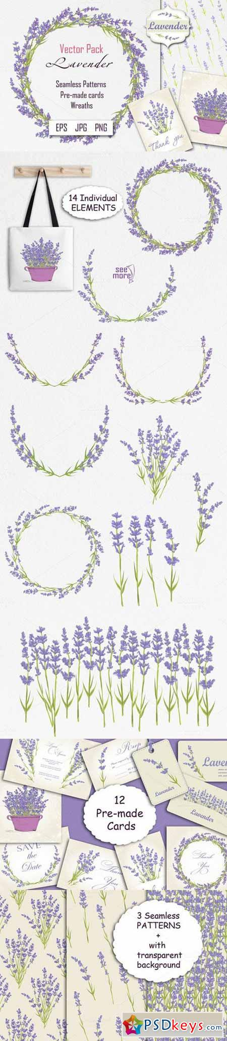 Lavender. Spring Flowers collection 620047