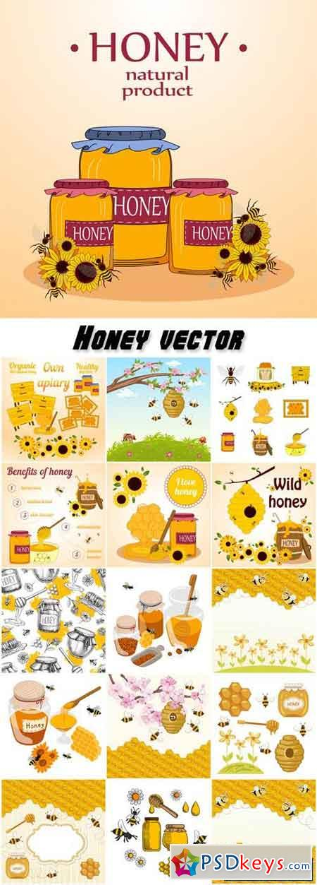 Honey vector, natural product
