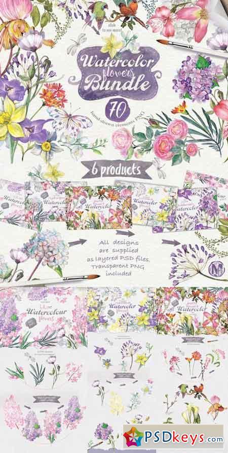 70 summer flowers 647450