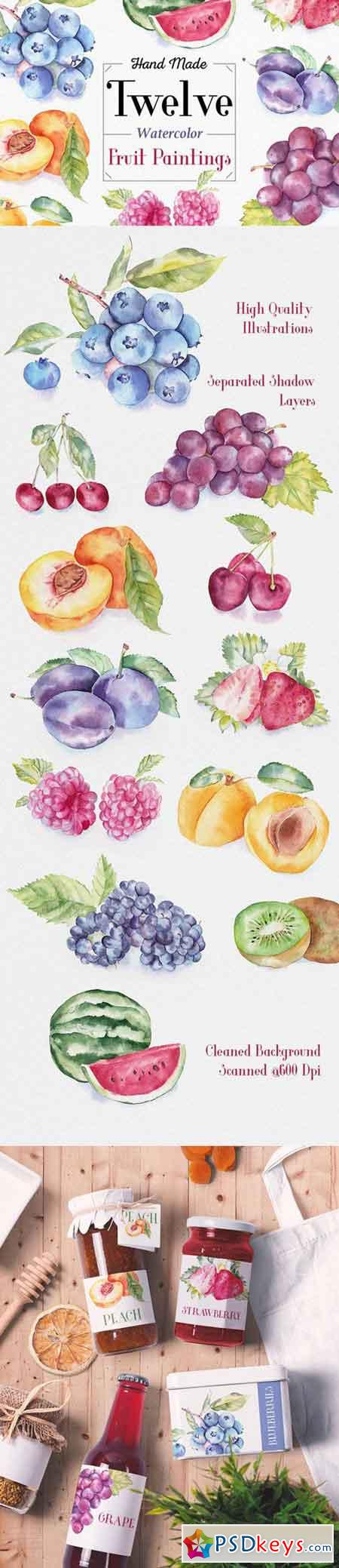 Fruit Watercolor Illustrations 334077
