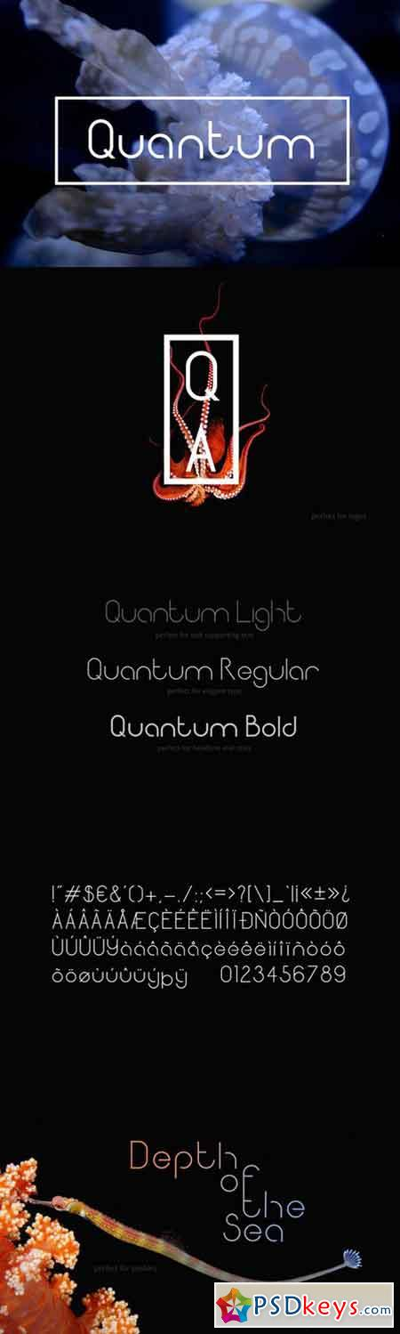 Quantum Sans Serif Fonts 664611