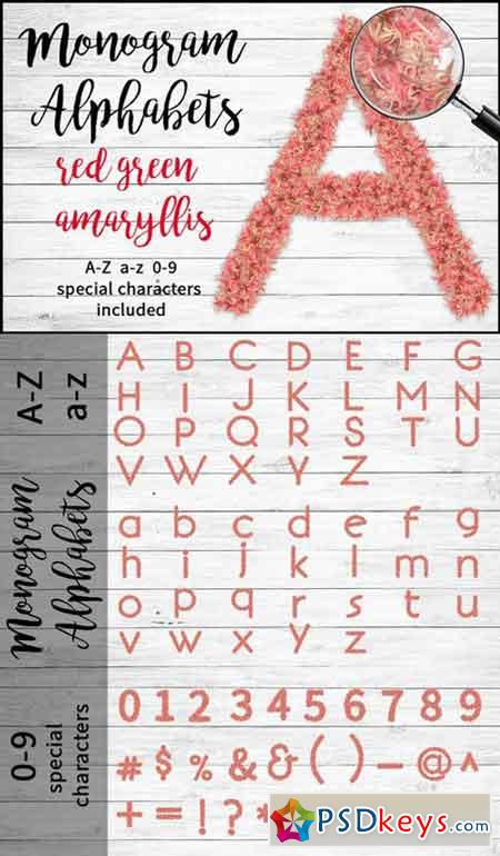 Red Green Amaryllis Alphabets 668494