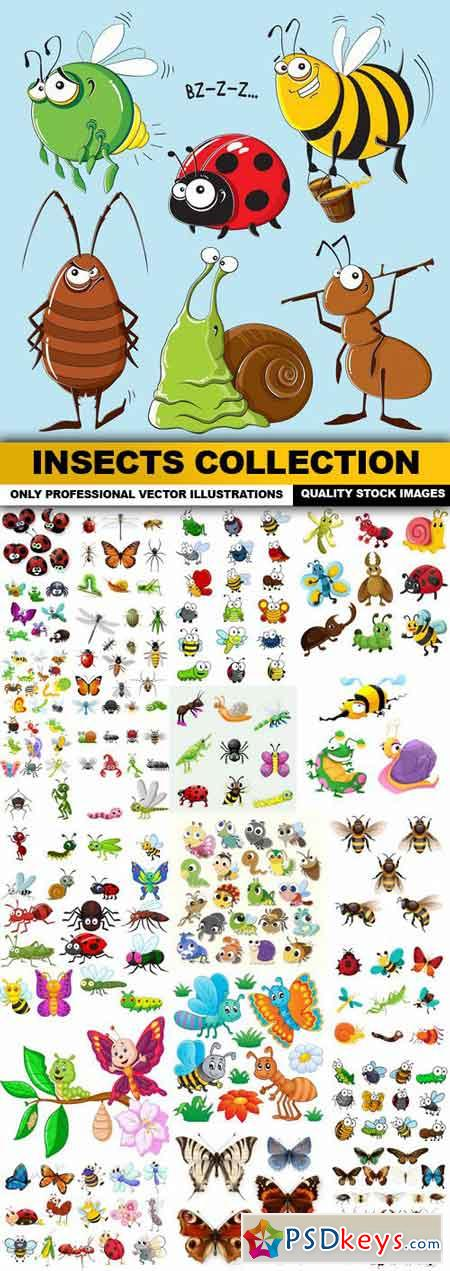 Insects Collection - 25 Vector