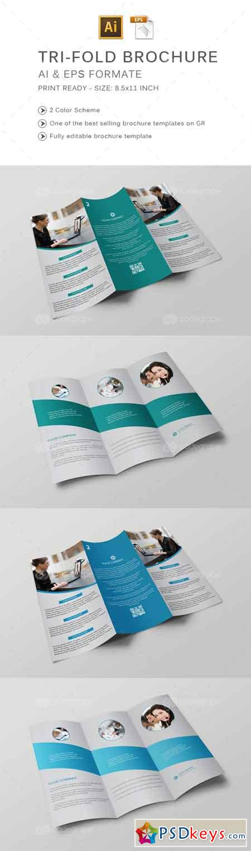 Tri-Fold Brochure 6198
