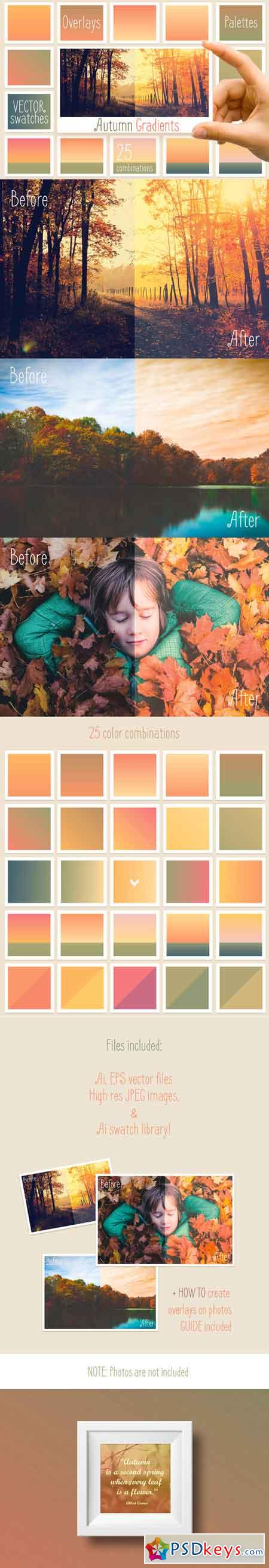 Autumn gradients 676098
