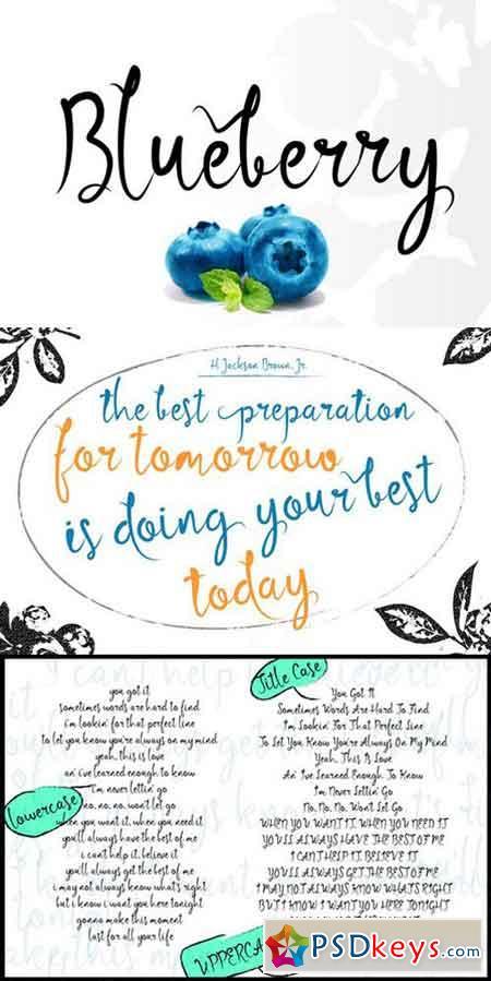 Blueberry Script Font 699678