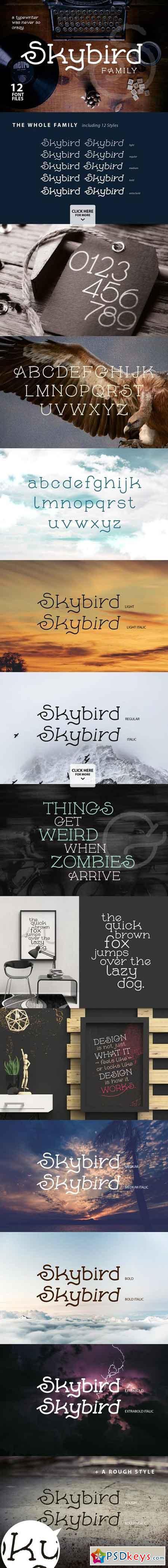 Skybird Font Family 697675