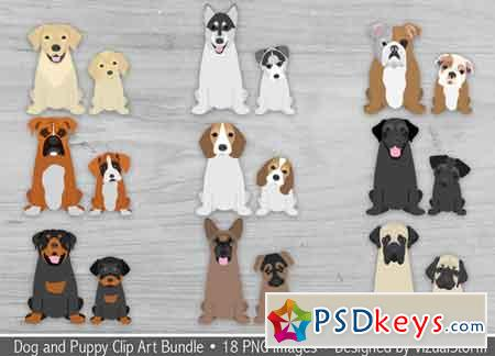 Dogs and Puppies Illustration Bundle 662058