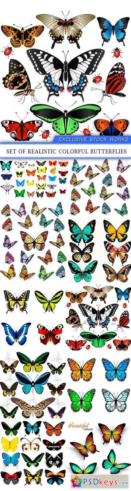 Set of realistic colorful butterflies 10X EPS